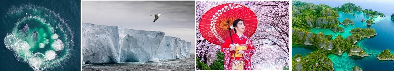 Antarctica, Japan, Ha Long Bay